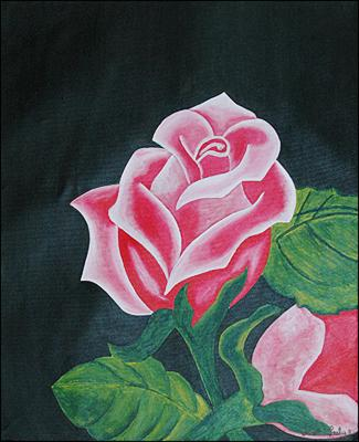 Roses Rose by Lesly Cetout