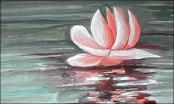 Waterlily by Roland Dorcely