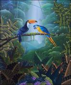 Toucan and Parrot by Jacques Geslin