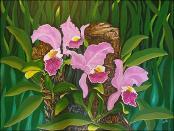 Orquideas de Sta. Fe by Isidoro  Tejeda